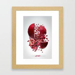 Flying Pomegranate Framed Art Print
