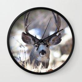 Watercolor Deer, Mule 02, RMNP, On Guard Wall Clock