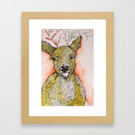 Baby Buck Framed Art Print