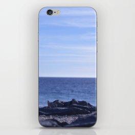 sea rocks. iPhone Skin