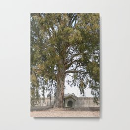 Lonely dog house Metal Print