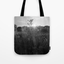 variation on a theme Tote Bag
