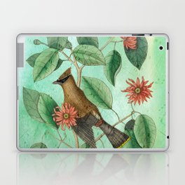 Bohemian Waxwing with Carolina Allspice, Antique Natural History Collage Laptop & iPad Skin