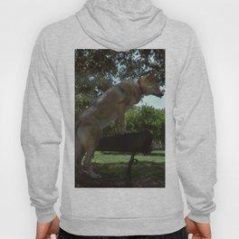 Czech Wolfdog Hoody