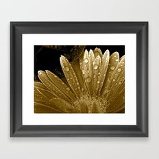 After the Rain Came Framed Art Print