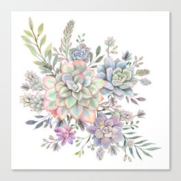 succulent watercolor 8 Canvas Print