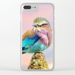 Lilac breasted roller at sunset Clear iPhone Case