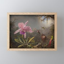 Cattelya Orchid And Three Brazilian Hummingbirds 1 By Martin Johnson Heade   Reproduction Framed Mini Art Print