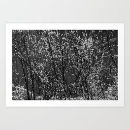 Icy Days NO8 Art Print