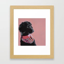 Black Standard Poodle in Pink Framed Art Print