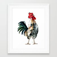 rooster Framed Art Prints featuring Rooster by Bridget Davidson