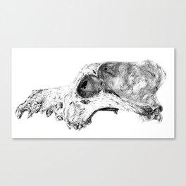 Wolf Skull Canvas Print