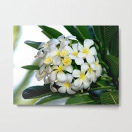 Aloha Bouquet Metal Print