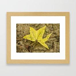 The Yellow Leaf Framed Art Print