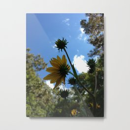 SwampSunflower Metal Print