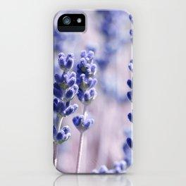Lavender 0158 iPhone Case