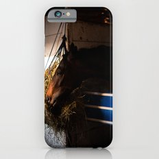 Horse iPhone 6s Slim Case