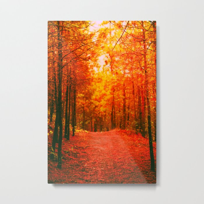 Red and Orange Autumn II Metal Print