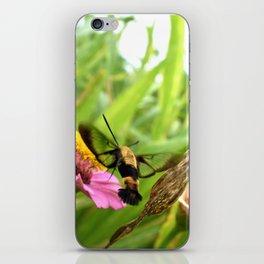 Bumble shrimp iPhone Skin