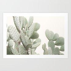 Cactus 4 Art Print