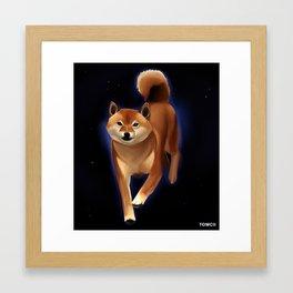 Shiba Framed Art Print