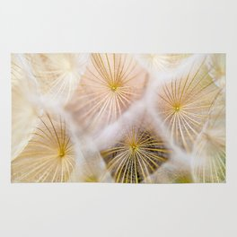 Dandelion Seed Head Close Up Soft White Texture & Pattern In Nature Rug