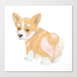 Welsh Corgi puppy Canvas Print