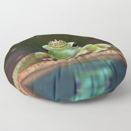 Frog Princess Floor Pillow