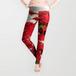 Shimmer Surprise Poinsettias Leggings