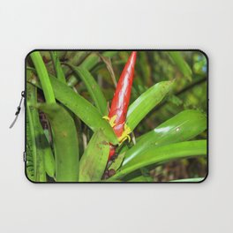 The Bromeliad (the air) plant in flower - El Yunque rainforest PR Laptop Sleeve