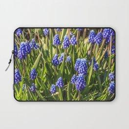 Grape hyacinths muscari Laptop Sleeve