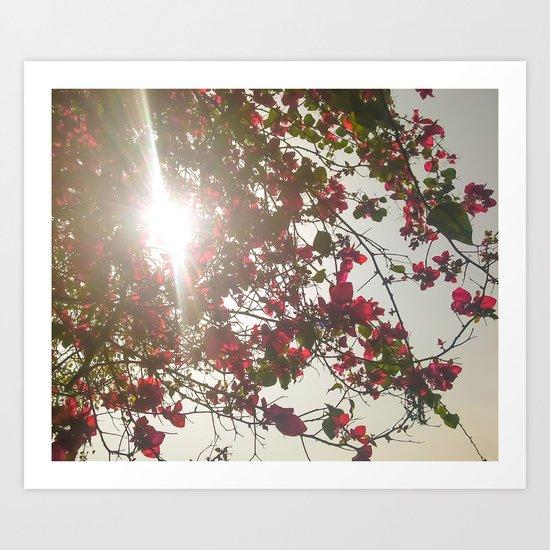 Bright Morning Art Print