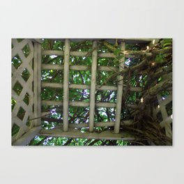 Into the garden Canvas Print