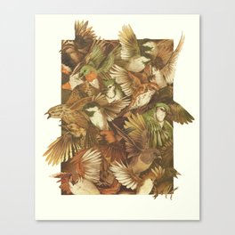 Red-Throated, Black-capped, Spotted, Barred Canvas Print