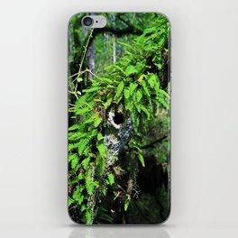 In High Regard- vertical iPhone Skin