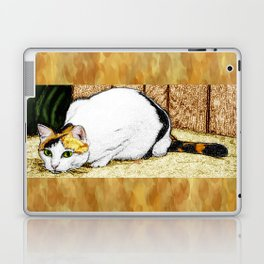Calico Cat Laptop & iPad Skin