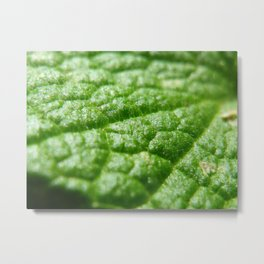 super green Metal Print