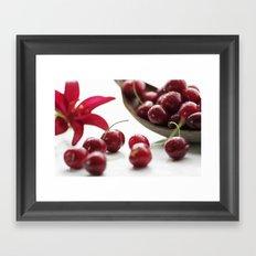 Fresh cherries straight from the tree Framed Art Print