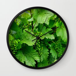 Green Grape Clusters Among the Vines Wall Clock