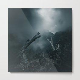 Dark woods 2 Metal Print