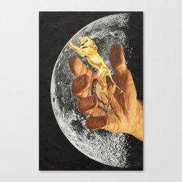 arsicollage_10 Canvas Print