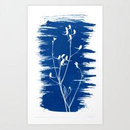 Herbal Solarprint #4 Art Print