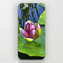 Summery Ode to the WATER LILY iPhone Skin