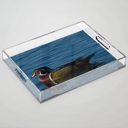 Colorful Wood Duck Acrylic Tray