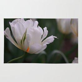 Expressive White Tulip Rug