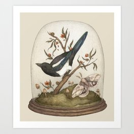 One for Sorrow Art Print