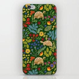 Tortoise and Hare iPhone Skin