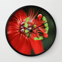 Passiflora vitifolia Scarlet Red Passion Flower Wall Clock