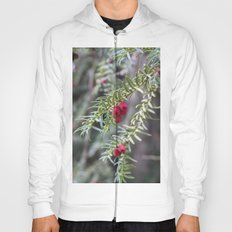 Autumnal Berries Hoody