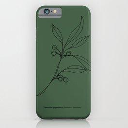Tasmanian Pepperberry Illustration - Green iPhone Case
